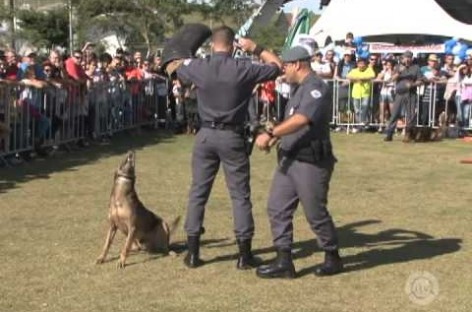 2º Dog Fest Itatiba