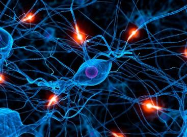 Mais Saúde – Neurologia