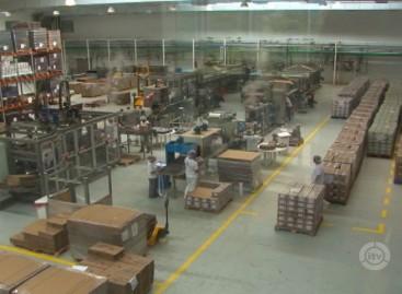 Empresa de geleias em Itatiba é referência em sustentabilidade