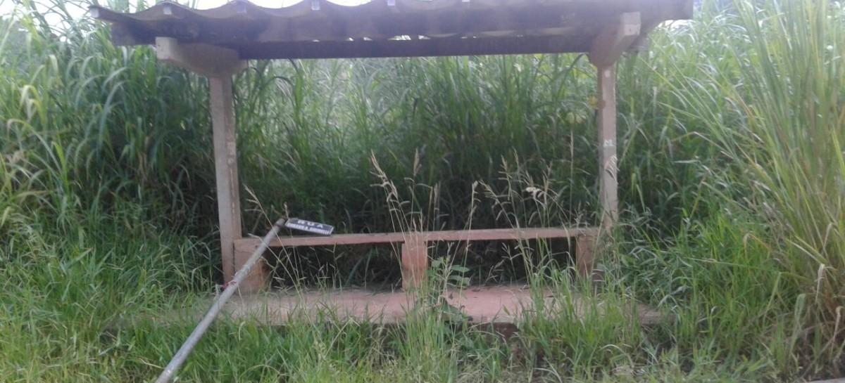 Moradores do Bairro San Martin tomam iniciativa e cortam mato em ponto de ônibus