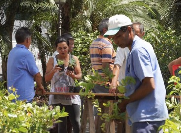 Itatiba sobe 19 posições no ranking ambiental e mantém Selo VerdeAzul