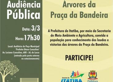 Prefeitura apresenta laudos das árvores da Praça da Bandeira em Audiência Pública