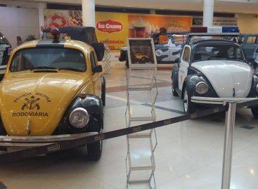 Exposição Carros de Polícia traz acervo de viaturas históricas