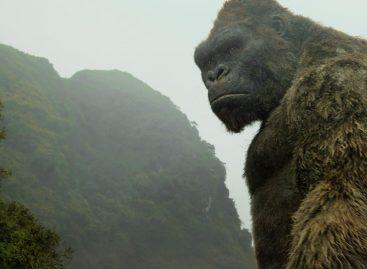 'Kong' tenta criar nova mitologia para o macaco rei de Hollywood