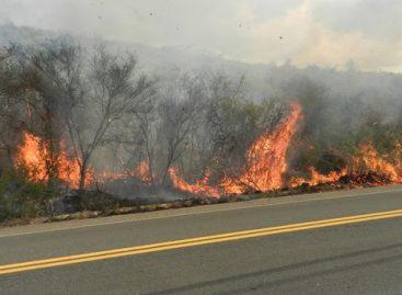 Rodovias do Corredor Dom Pedro tem recorde de queimadas