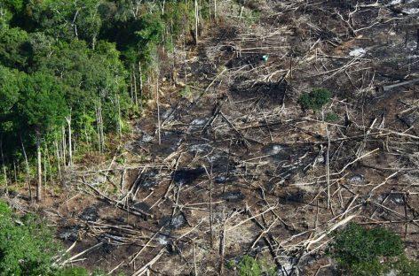 Ministro diz que Brasil preservou 84% da Amazônia