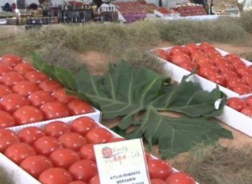 Festa do Caqui chega ao fim: No domingo fomos procurar delícias produzidas com a fruta